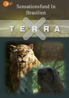 Terra X - Sensationsfund in Brasilien (Die ersten Amerikaner)